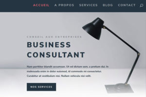 exemple site internet consultant2
